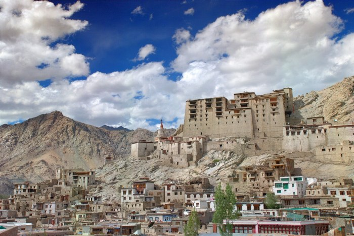 This is the famous Leh town - an ancient capital of Ladakh region and a solid cultural centre.