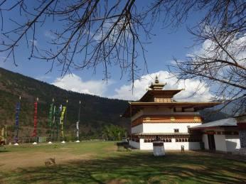 Chimi Lakhang Temple - houses of Phallus