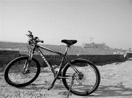 Push Bike Stories
