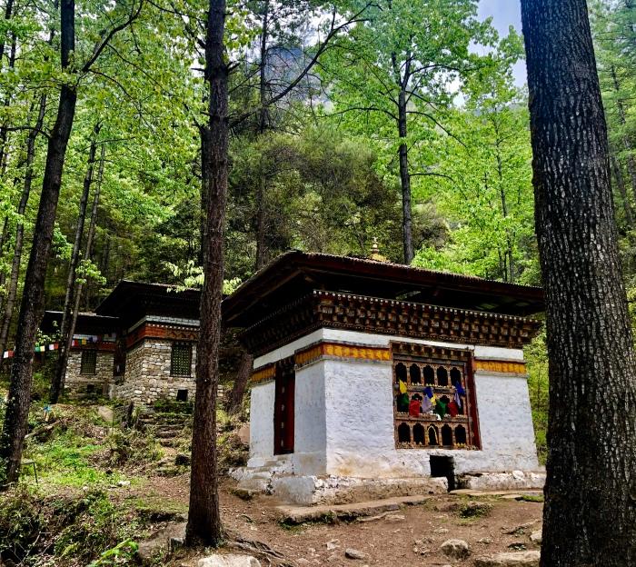 Viktorianz Bhutan 5