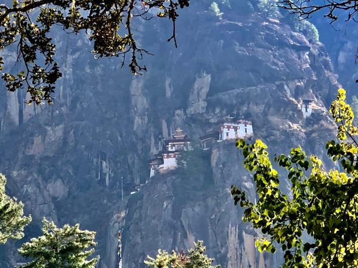 Viktorianz Bhutan 6